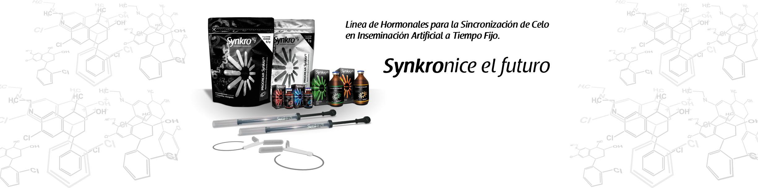 linea-completa-synkroxy